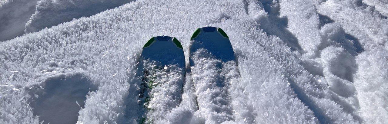 Skispitzen im Pulverschnee