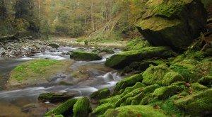 im Naturpark Nagelfluhkette, © Naturpark Nagelfluhkette