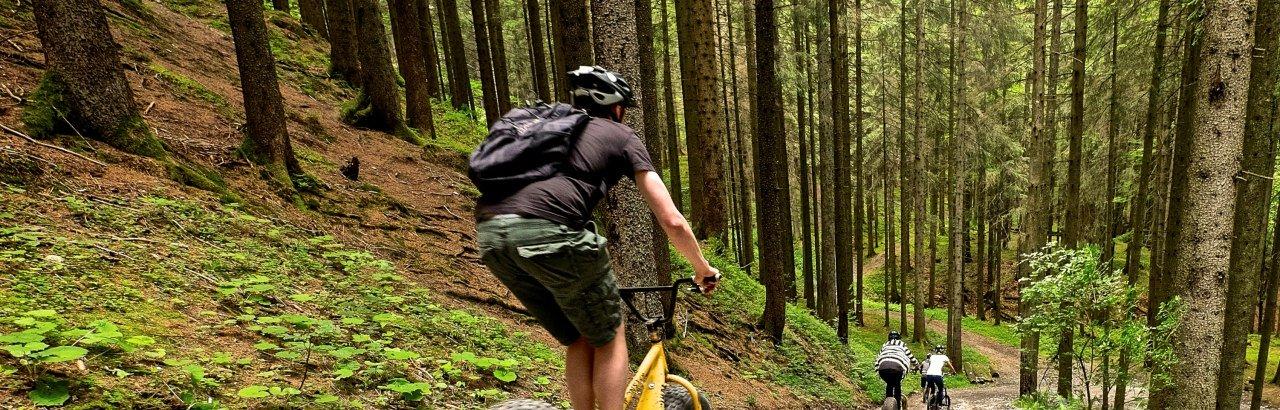 Ofterschwang - Downhill-Roller © Tourismus Hoernerdoerfer GmbH_@Pro Vision Media