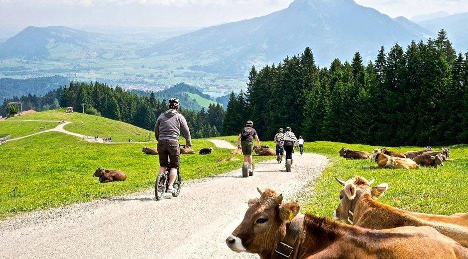 Downhill-Roller am Ofterschwanger Horn © Tourismus Hörnerdörfer, ProVisionMedia