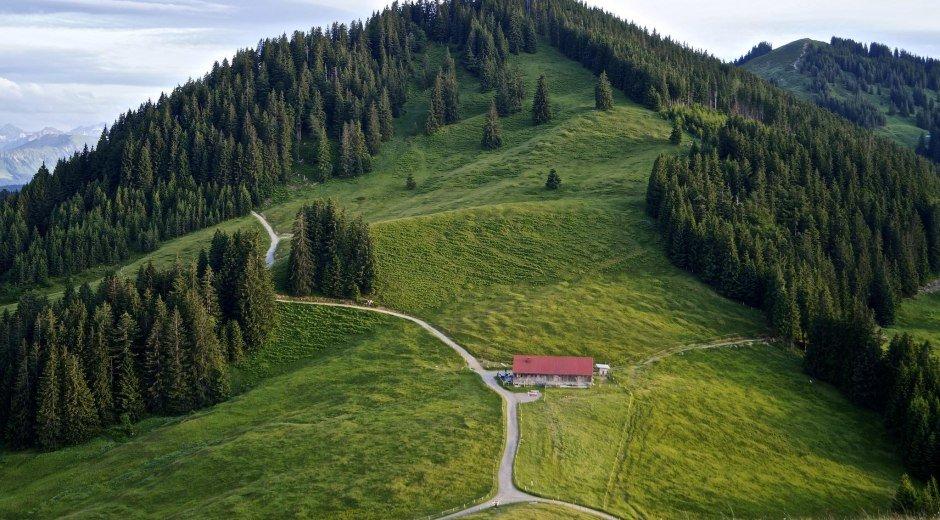 Ofterschwang - Fahnengehren Alpe © Tourismus Hörnerdörfer