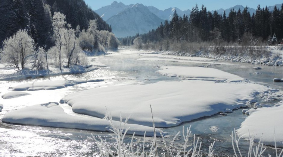 Blick auf die Iller vom Auwaldsee © Tourismus Hörnerdörfer, H. Besler