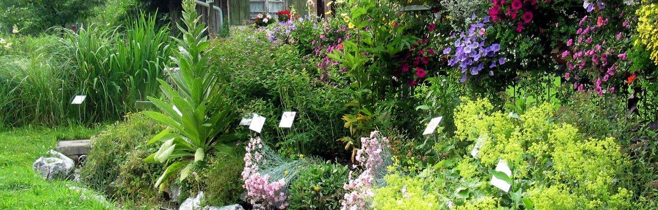 große Blumen- und Pflanzenvielfalt im Kreislehrgarten Sulzberg-Ried © Markt Sulzberg