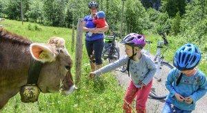 Kinder und Eltern mit Kühen am Weidezaun nach einer Radtour., © Alexander Rochau