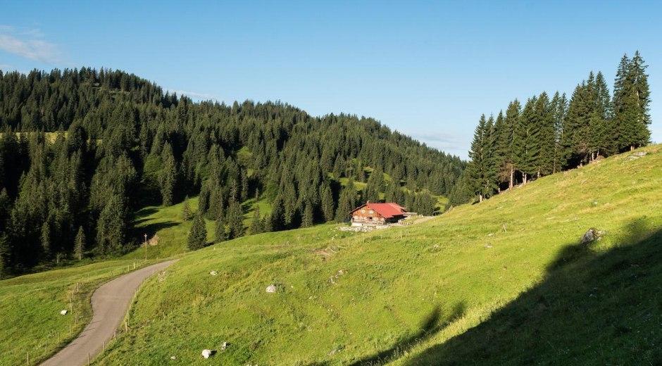 Die Freiburger Alpe im Lochbachtal bei Obermaisels © Tourismus Hörnerdörfer, F. Kjer
