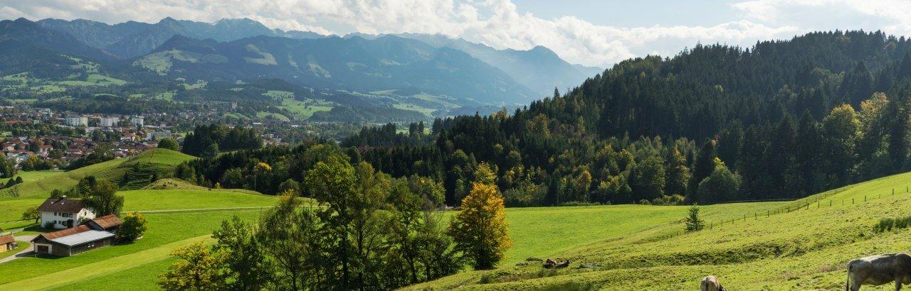 Landschaftsaufnahme mit mehreren Kühen © Dominik Luschtenetz im Auftrag AGT