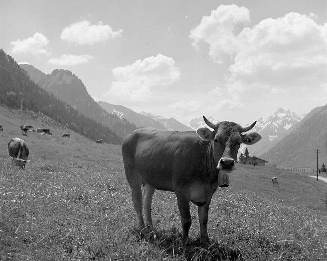 Gitta vor Allgäuer Landschaft 1940 © Lala Aufsberg, Archiv Heimatbund Allgäu e.V.