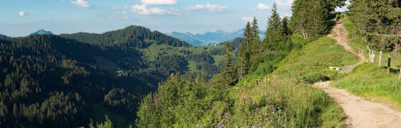 Bolsterlang - Wanderweg am Lochbachtal © Tourismus Hoernerdoerfer GmbH, @Kappest